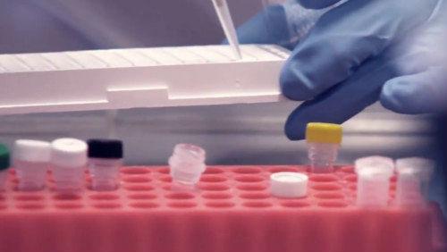 Čeští vědci našli originální recept na přípravu nových antibiotik