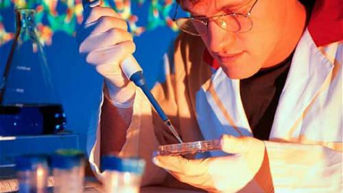 Fascinující možnosti DNA