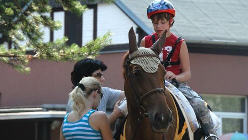 Hiporehabilitace: Když koně pomáhají lidem