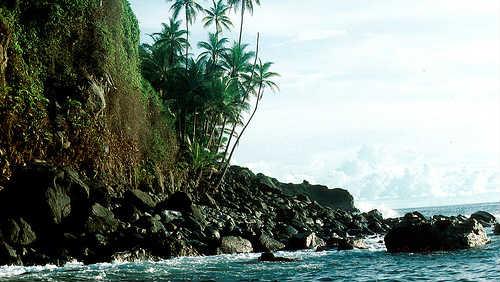 Isla del Coco aneb co ukrývá Kokosový ostrov?