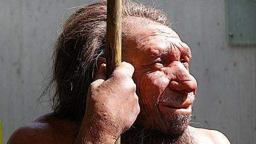 Všechno o neandertálcích